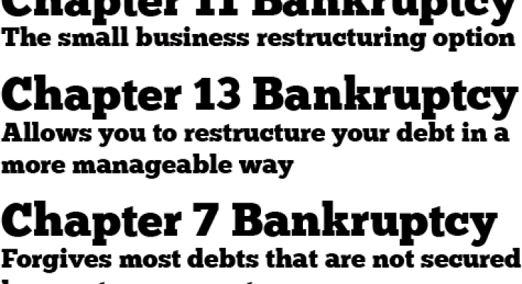 chapter 11 bankruptcy - Eric Slocum Sparks PC